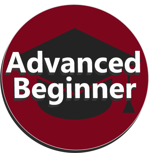 Advanced Beginner Level